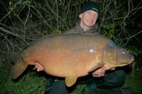 Fish like Pips will now have pushed over the 60lb mark