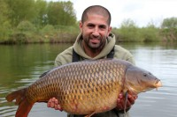 Ali with another scale perfect common
