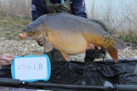 The lads stocked 13 fish over 40lb