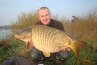 This lovely clean common