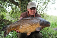 Craig managed to snare this 23lb common from a snaggy swim