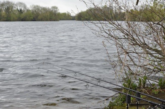The fish were still holding up in the central area of the lake
