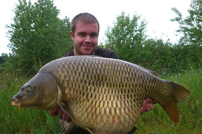 Michael displaying a chunky common