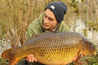 An old Redmire common at 32lb 8oz