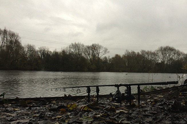Rods out on a low-stock pit, deep in the Lea Valley