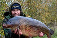 Another immaculate common for Dave