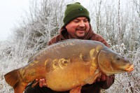 A stunning carp in sub-zero conditions