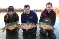 These scaley beauties went into another Ashton Keynes water