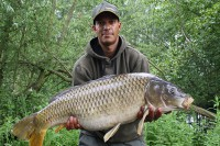 A 28lb 9oz common
