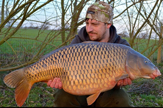 This amazing common was a highlight of Dan's recent campaign