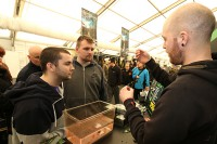 See the Korda team tying rigs and answering questions