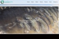 The new Embryo website www.embryoangling.org is now live
