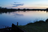 Myths Pool is situated in the heart of Essex