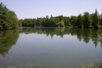 Peaceful Etang Du Bois