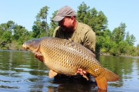Another big common