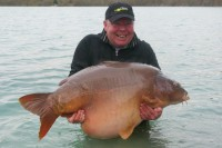 Gigantica has had a great year and it could get better