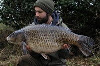 28lb 12oz common