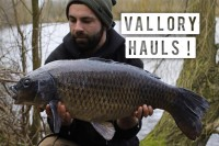 Luke Vallory has been prolific lately