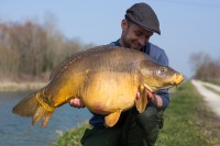 Kevin spotted this 40lb-plus mirror
