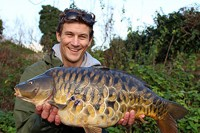 Beautiful scaly stock fish