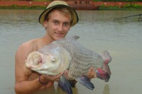 The sought-after Siamese carp