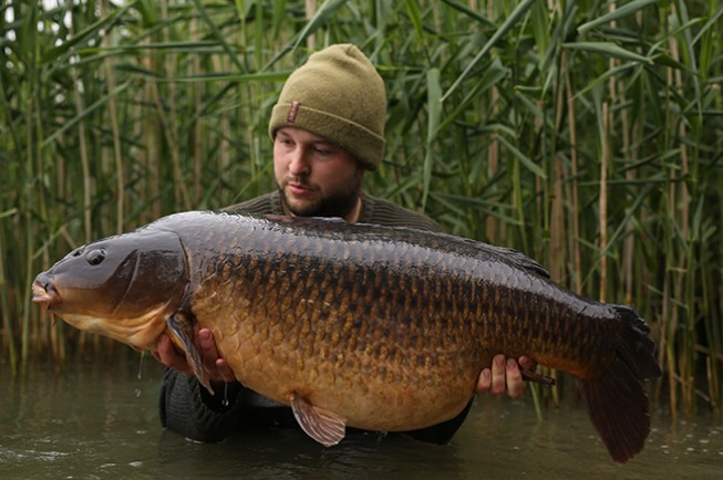 Carp don't get better than this