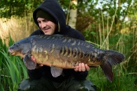 The first of Jim's local campaign was this awesome fish