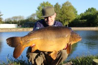 A cracker for Francis Bayliss
