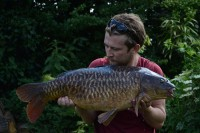 Beautiful scaly mirror