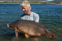 Another big common for Alexander