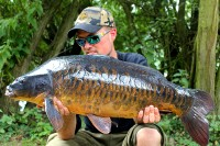 Stunning fully-scaled mirror