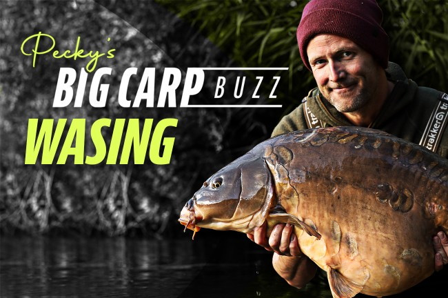 Tips and tactics to <b>Catch</b> carp in the winter months