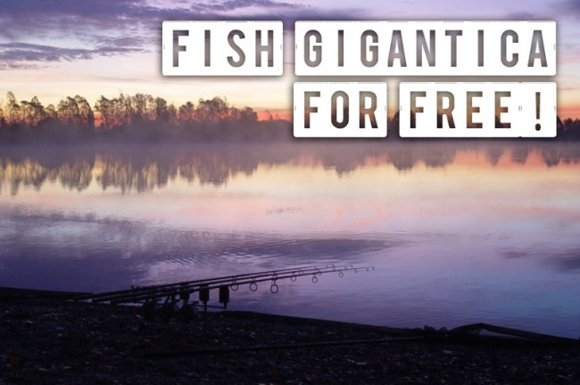 Sign up for the Gigantica work party and get a free trip!