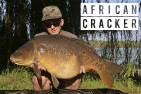 Fantastic haul of big South African carp!
